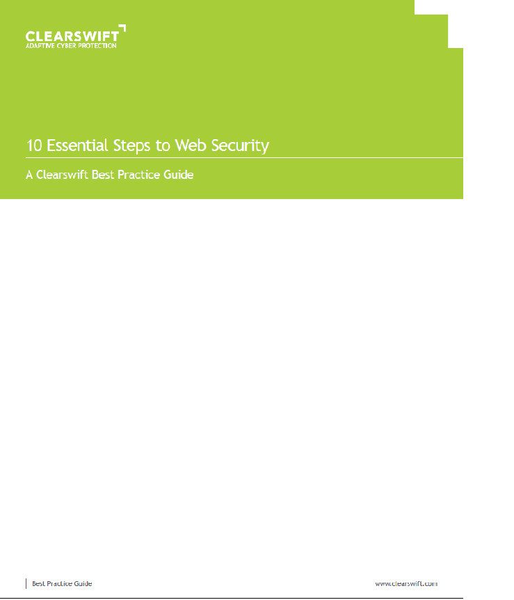 10 Essential Steps to Web Security