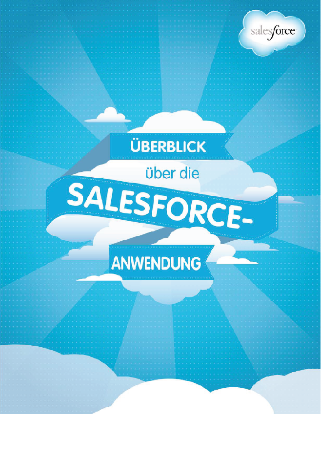 Überblick über die Salesforce Anwendung