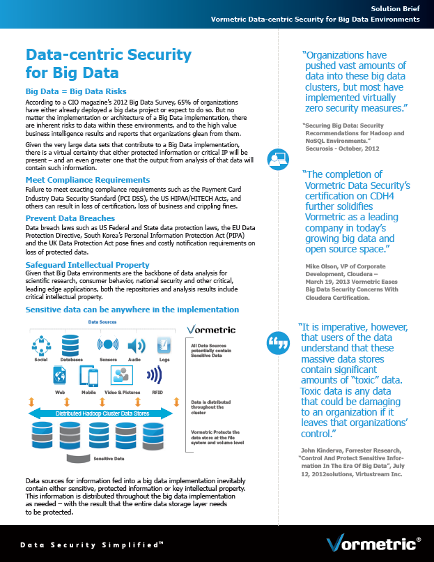 Solution Brief: Vormetric Data-centric Security for Big Data Environments