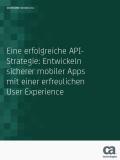 Finden Sie eine erfolgreiche API-Strategie: