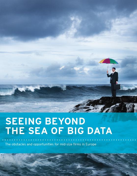 Schaffen Sie den Durchblick in der Datenflut (Englisch)