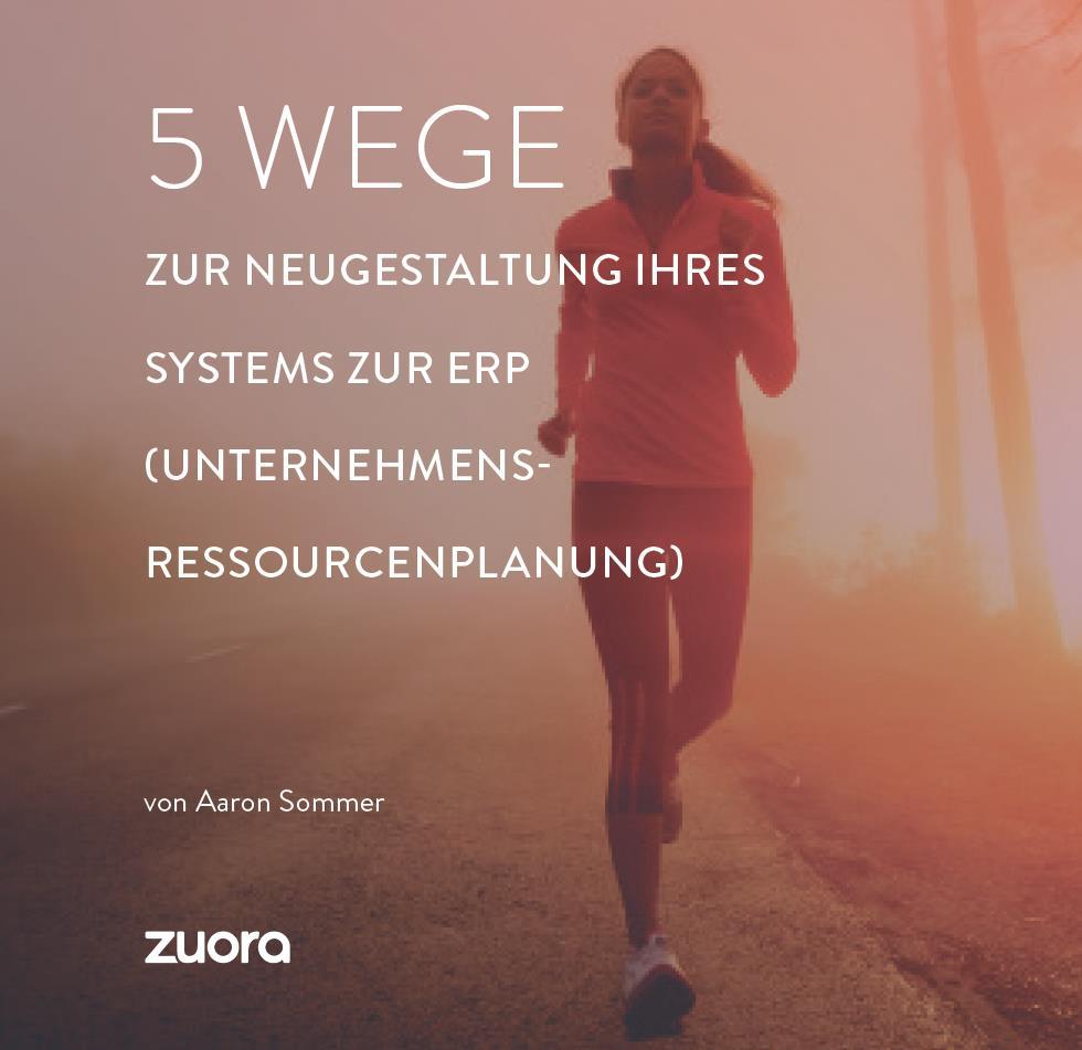 5 Wege zur Neugestaltung Ihres ERP Systems