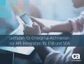 Leitfaden für Enterprise-Architekten zur API-Integration für ESB und SOA