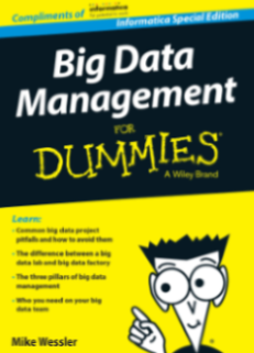 Big Data Management for Dummies
