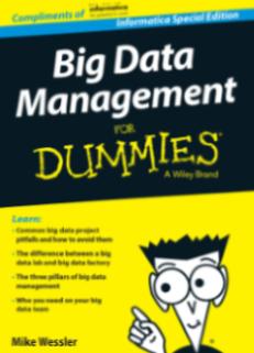 Big Data Management for Dummies