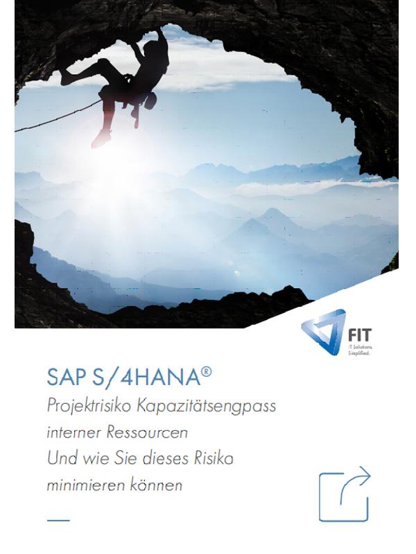 So lassen sich Risiken bei der Planung eines SAP S/4HANA-Projektes vermeiden