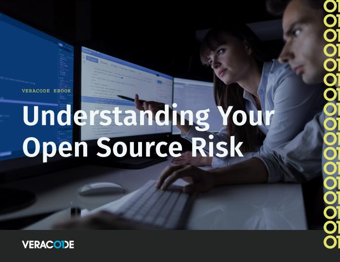 Verständnis Ihres Open Source-Risikos